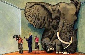 房间里的大象:合谋的沉默